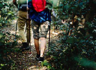 Wandelen-met-wandelstokken