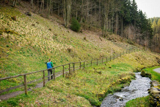 Nationaal Park Eifel