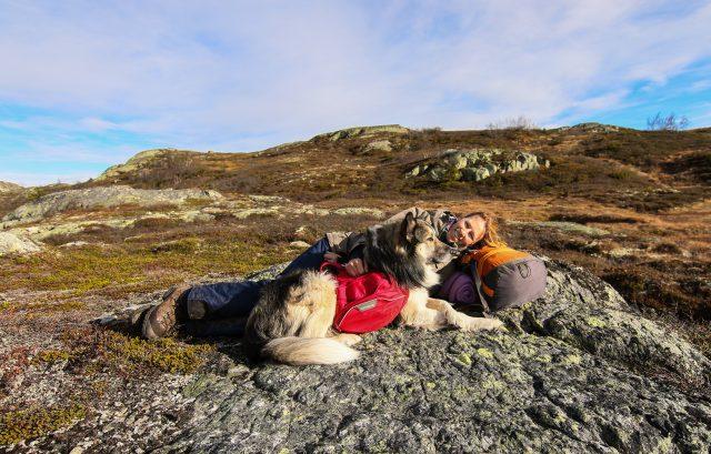 wandelen in noorwegen met hond